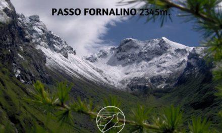 GIUGNO: TRADIZIONALE INCONTRO DELLE GENTI DI ANTRONA E BOGNANCO AL PASSO DEL FORNALINO