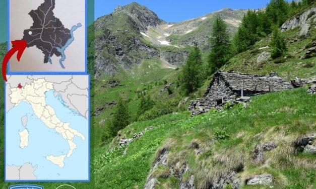 """BELLEZZE DEL VERBANO CUSIO OSSOLA – L'alpe Teste (""""di fuori""""), Parco Naturale alta valle Antrona –"""